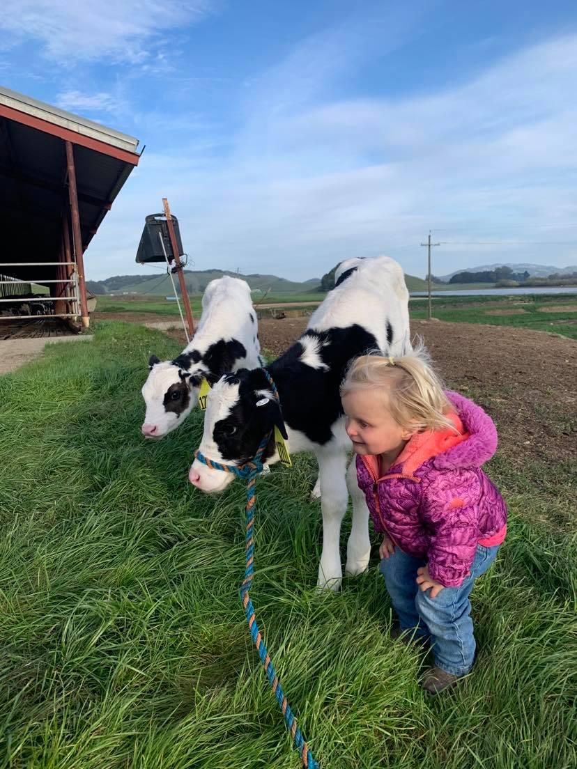 Klancy with Calf